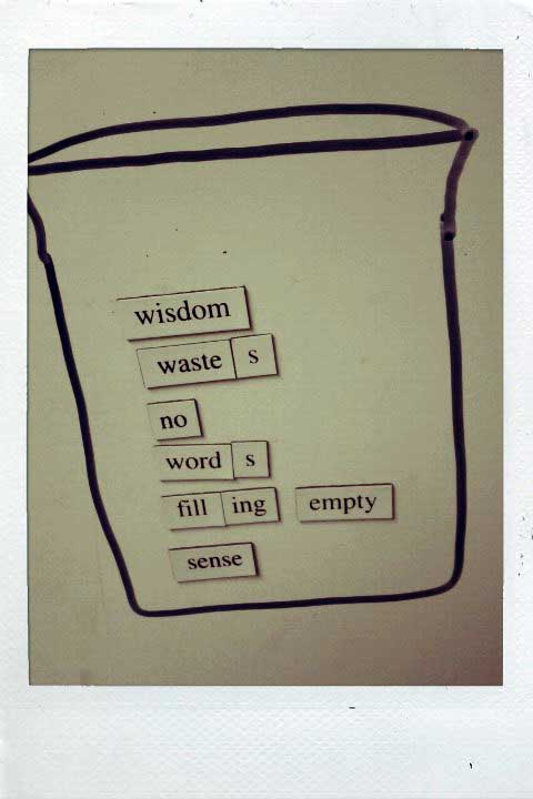 Fridge for Thought by Andrew Kooman, Wisdom-Sense