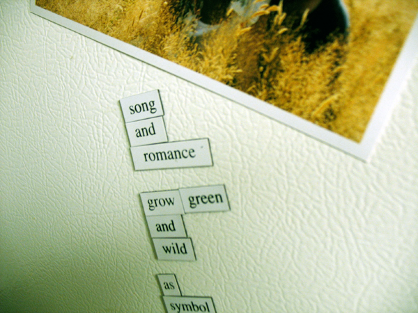 Fridge for Thought by Andrew Kooman - Green